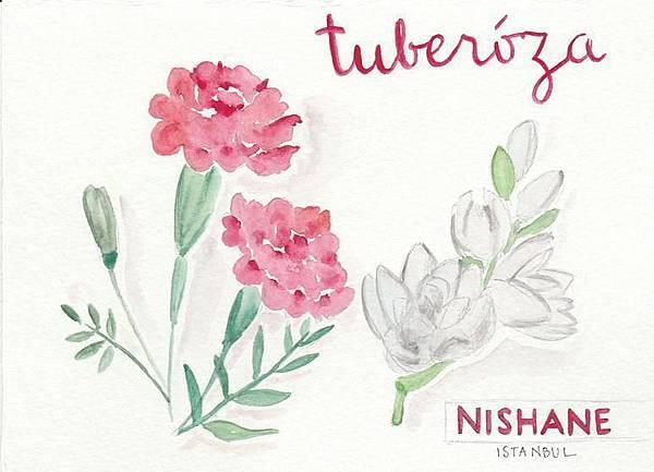【NISHANE】Tuberosa (墨西哥晚香玉)3.jpg