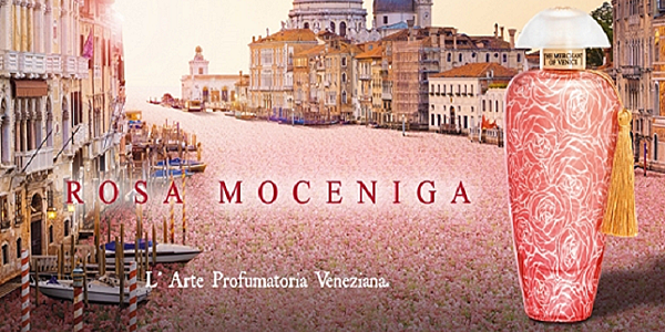 【The Merchant of Venice】Rosa Moceniga (莫契尼哥玫瑰)8.png
