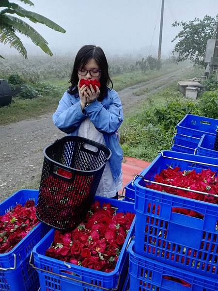 【Kimature】Rose Polyphenols (玫瑰多酚)8.jpg