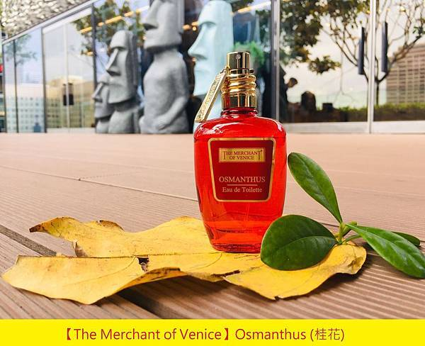 【The Merchant of Venice】Osmanthus (桂花)1.jpg