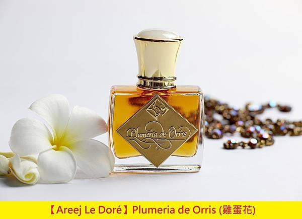【Areej Le Doré】Plumeria de Orris (雞蛋花)1.jpg
