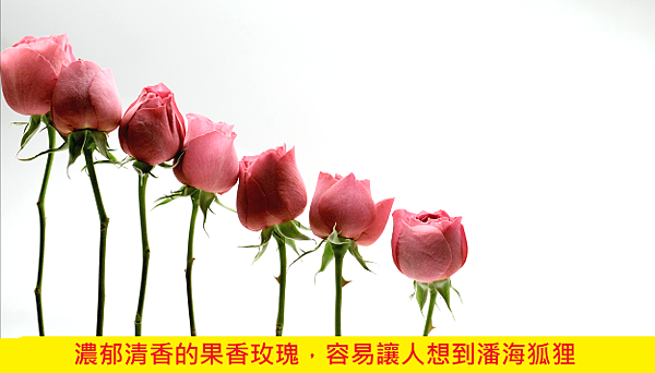 【Issey Miyake】L'eau D'Issey Rose %26; Rose (一生之水 玫瑰玫瑰)4.png