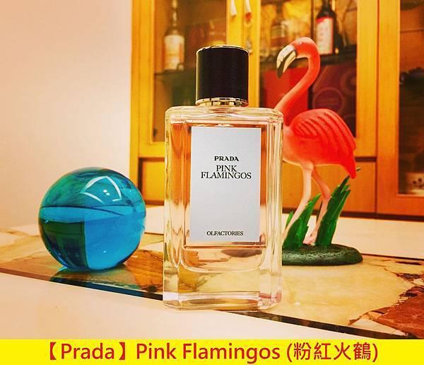 【Prada】Pink Flamingos (粉紅火鶴)1.jpg