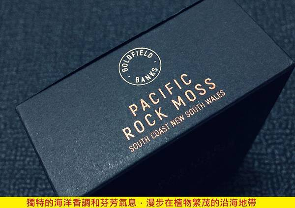 【Goldfield %26; Banks】Pacific Rock Moss (太平洋石苔)4.jpg