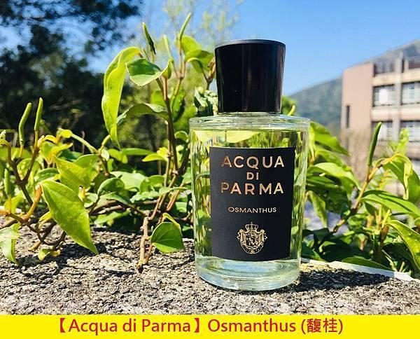 【Acqua di Parma】Osmanthus (馥桂)1.jpg