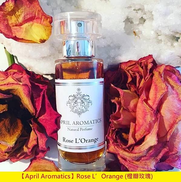 【April Aromatics】Rose L'Orange (橙瓣玫瑰)1.jpg