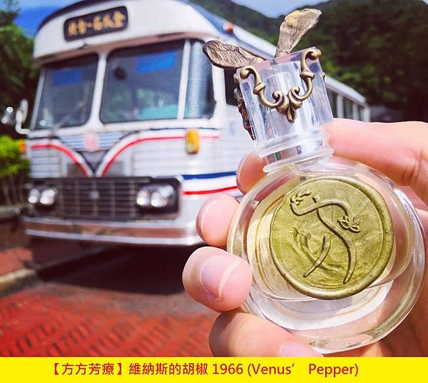 【方方芳療】維納斯的胡椒 1966 (Venus' Pepper)1.jpg