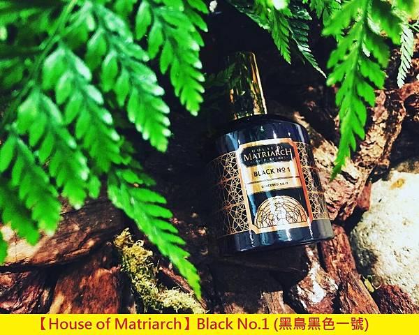 【House of Matriarch】Black No.1 (黑鳥黑色一號)1.jpg