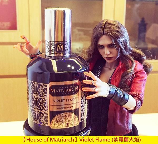 【House of Matriarch】Violet Flame (紫羅蘭火焰)1.jpg