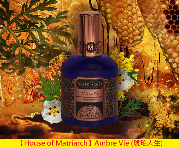 【House of Matriarch】Ambre Vie (琥珀人生)1.png