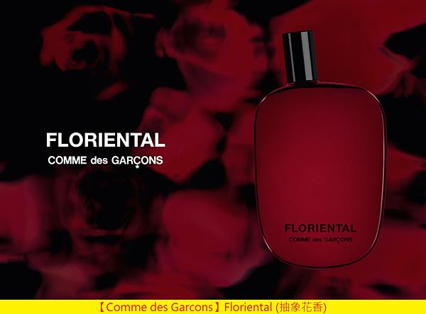 【Comme des Garcons】Floriental (抽象花香)1.png