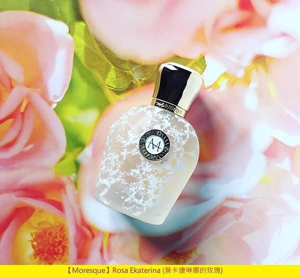 【Moresque】Rosa Ekaterina (葉卡捷琳娜的玫瑰)1.jpg