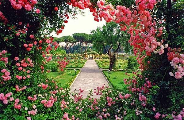 【Eric Buterbaugh】Exactly Rose (絕對玫瑰)4.jpg