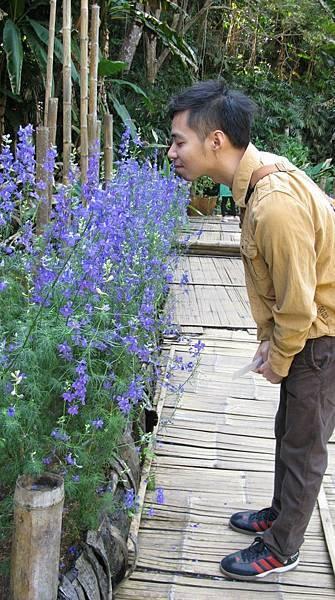 【The Merchant of Venice】Flower Fusion (花流萃集)5.jpg