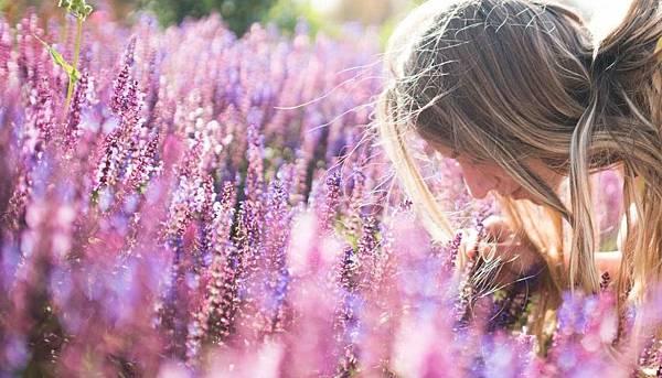 【April Aromatics】Lavandeluce (微醺衣草)5.jpg