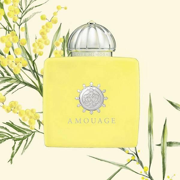 【Amouage】Love Mimosa (黃金羽)2.jpg