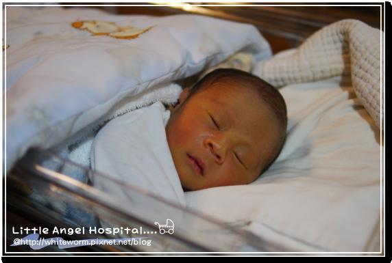 小天使012