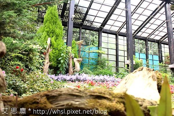 藥花園-8.JPG