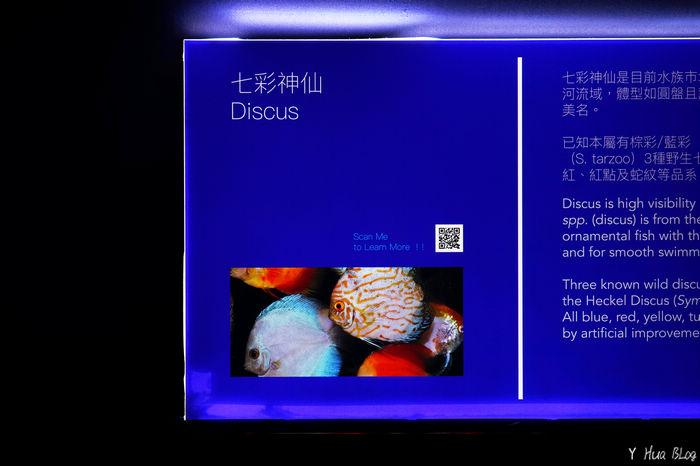DSC06628.jpg