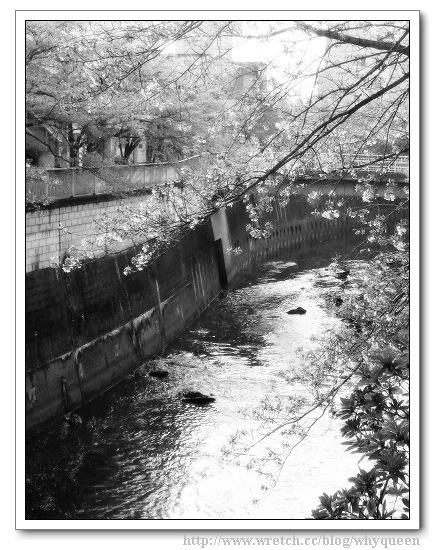 神田川 BA.jp