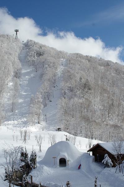 中途休息站有個雪窯洞!