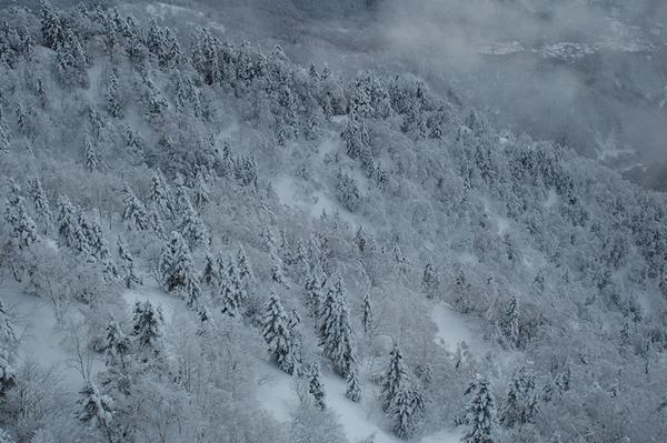 壯闊山景4 (下山時拍攝)
