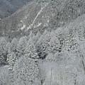 壯闊山景5 (下山時拍攝)