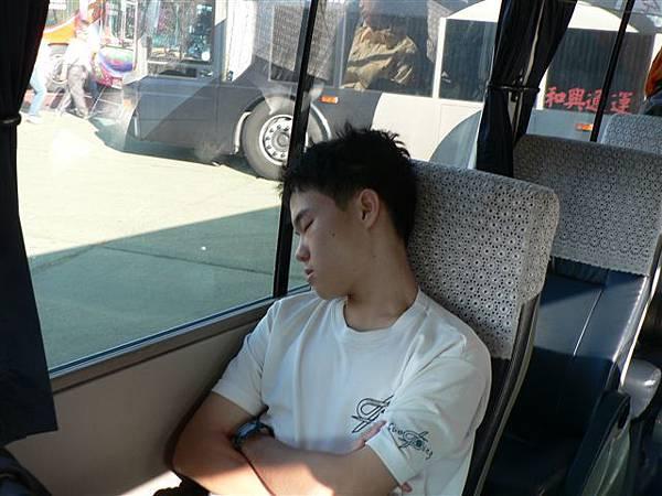 彥誌也在睡.JPG