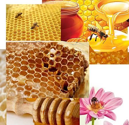 各種蜂蜜功效大全