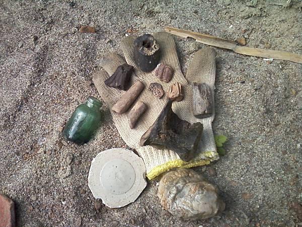 1021207許縣溪化石