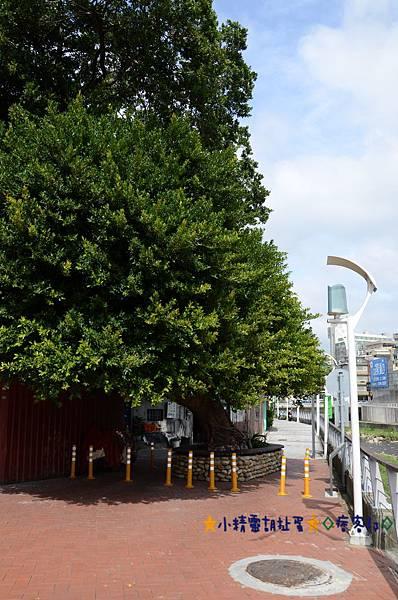 1老街溪 8.JPG