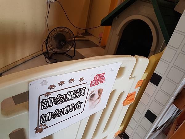 20170925_行運茶餐廳6.jpg
