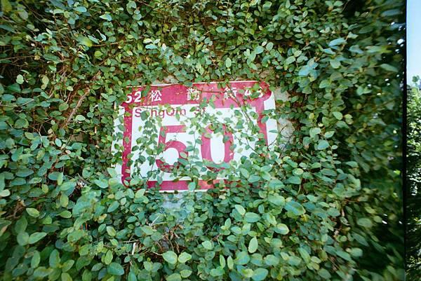 FUJI-100-05.jpg