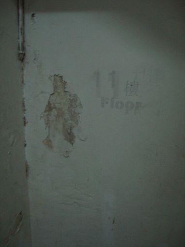 [20090101]11樓B座樓梯之牆壁一景