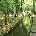 瑤琳仙境外的景色