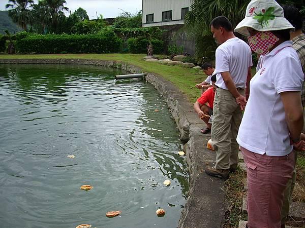 親戚家魚池