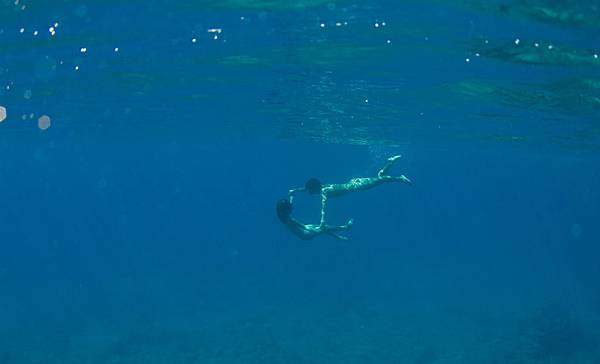 still-the-water-naomi-kawase-05
