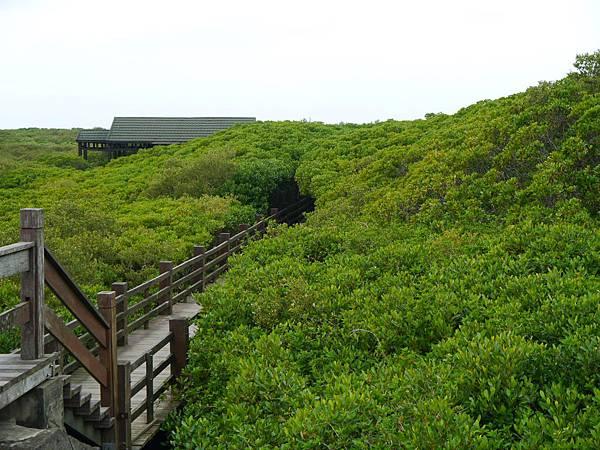 濱海自行車道_20.JPG