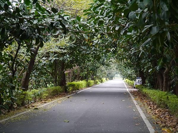 濱海自行車道_36.JPG