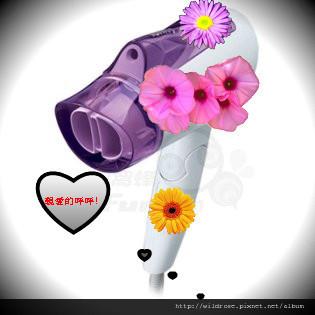 6481_20110620185459_320-2.jpg