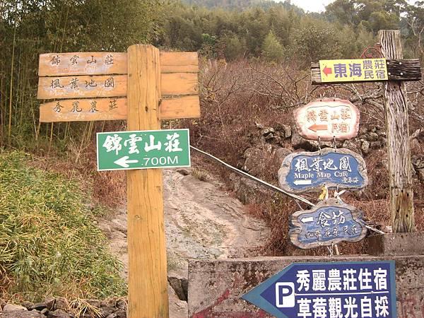 錦雲山莊楓葉場圖指標