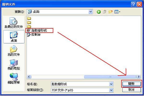 PDF-XChange Editor_13.bmp