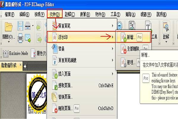 PDF-XChange Editor_17.bmp