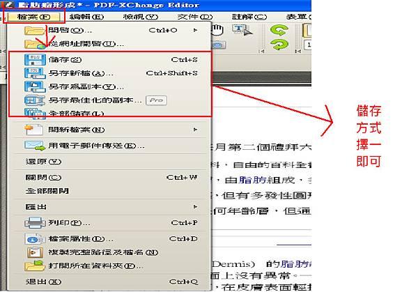 PDF-XChange Editor_23.bmp