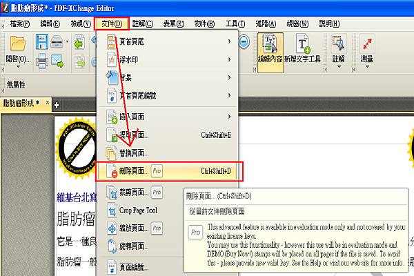 PDF-XChange Editor_21.bmp