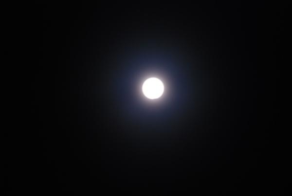 090722日偏蝕5.jpg