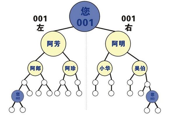改良式雙軌制度