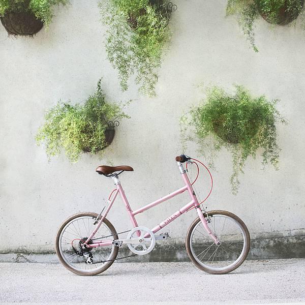 城市休閒腳踏車