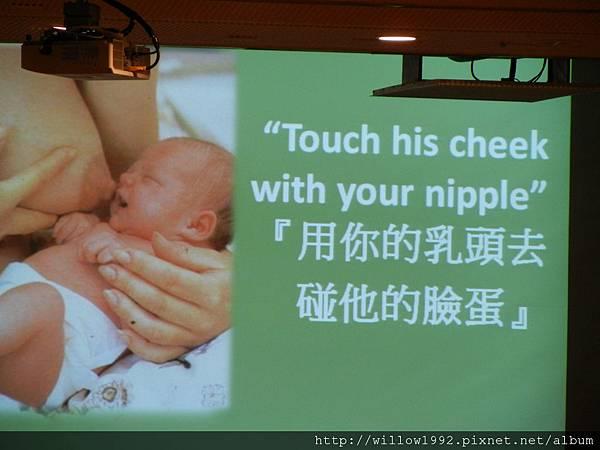 乳頭要在孩子的上唇