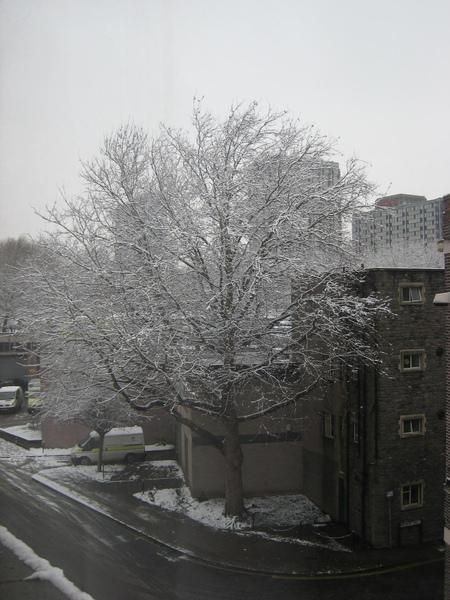 連從我的小書房看出去都是一片白色的世界